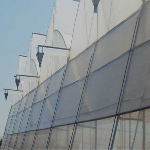 Outdoor Greenhouse Polycarbonate Closed Greenhouse And